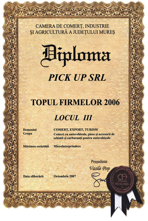 Pick up in Topul Firmelor 2006